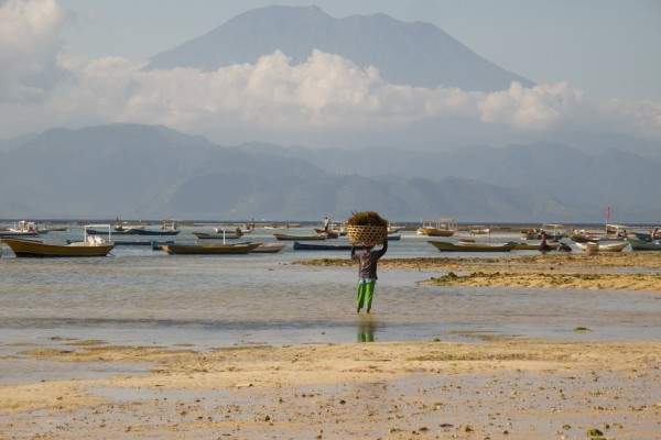 Nusa Lembogan à Bali
